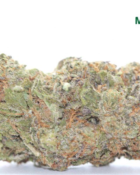*Grandaddy Purple* indica mountainside top shelf